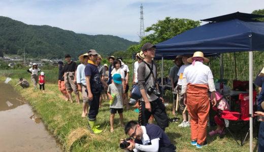 田植え祭り!