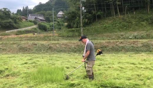 灼熱の草刈り